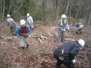 DSCN6786ホダ木を運ぶ